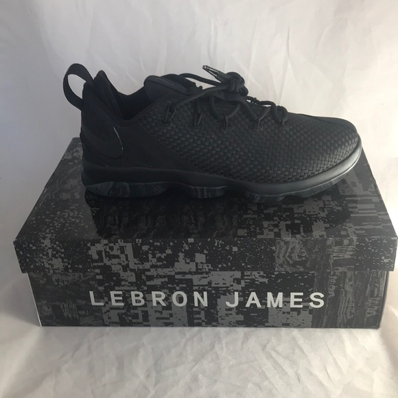 4623263ed6e4 Nike Lebron James XIV Low Black Shoes 878636-002